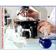 Разработка программного обеспечения для тестирования лекарственных средств. фото
