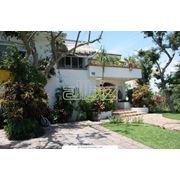 Декорирование дома. Озеленение домов. фото
