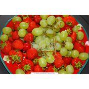 Выращивание ягод фото