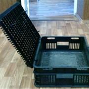 Ящик черн. для перевозки птицы, кроликов, поросят фото