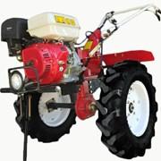 Мотоблок Shtenli 1030, 8,5 л.с., колеса 6,5х12 с фарой и дифференциалами фото