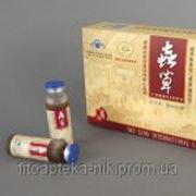 Кордицепс жидкий линчжи и аминокислотами /Энергия Тибета/