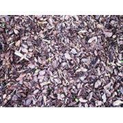 Мульчирование почвы (кора лиственницы сосны шелуха подсолнечника ореха фундук и др.) фото