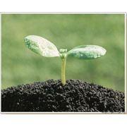 Производство и реализация плодородного грунта.