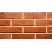 Керамический кирпич TERCA красный Риф Aseri фото