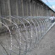 Егоза Стандарт плюс 1350/9 фото