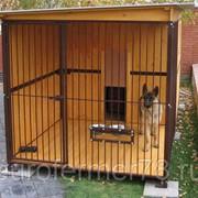 Вольер для собак фото