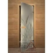 Дверь для бани АКМА АРТ с Фьюзингом ТРОСТНИК 7х19 (коробка липа) фото