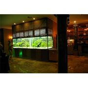 Установка аквариумов фото