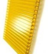 Поликарбонат желтый фото