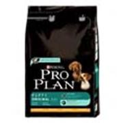 Корм Pro Plan Puppy Original для щенков с курицей и рисом 3 кг фото