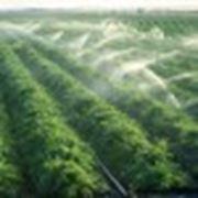 Проектирование систем полива для сада фото
