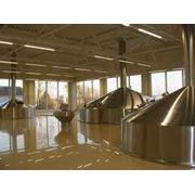 Производство пива фото