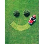 Уход за газонами,Устройство посевного газона с подготовленным грунтом (без ст-ти материала) фото