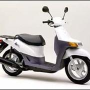Мопед, скутер Honda Topic AF 38 фото