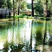 Строительство прудов и водоемов фото
