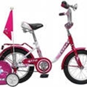 "Велосипед Pilot - 110 16"" фото"