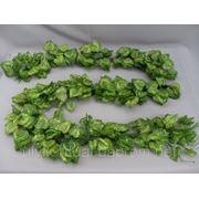 Искуственная зелень Цепь Берёза фото