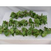 Искусственная зелень Цепь Осина фото