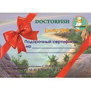 Подарочный сертификат на Экзотический биопилинг рыбками. фото