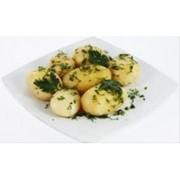 Доставка гарниров - Картофель отварной с зеленью(г) фото
