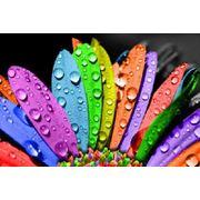 Печать полноцветная фото