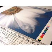 Листовая офсетная печать фото
