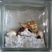 Стеклоблок эксклюзивный морская тематика МТ_003(Е) 190х190х80мм фото