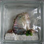 Стеклоблок эксклюзивный морская тематика МТ_003(У) 190х190х80мм фото