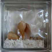 Стеклоблок эксклюзивный морская тематика МТ_003(О) 190х190х80мм фото
