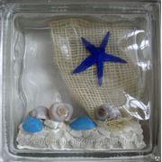 Стеклоблок эксклюзивный морская тематика МТ_004(Д) 190х190х80мм фото