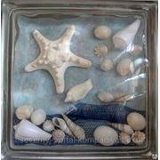 Стеклоблок эксклюзивный морская тематика МТ_009(В) 190х190х80мм фото