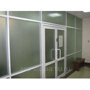 Алюминиевые маятниковые двери фото