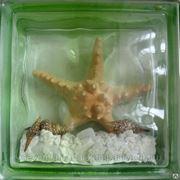 Стеклоблок эксклюзивный морская тематика МТ_001(Д) 190х190х80мм фото