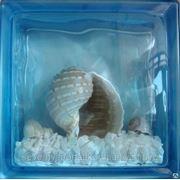 Стеклоблок эксклюзивный морская тематика МТ_003(Ч) 190х190х80мм фото