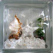 Стеклоблок эксклюзивный морская тематика МТ_005(Д) 190х190х80мм фото