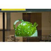 Пленка обратной проекции (витрина-телевизор) Серая фото