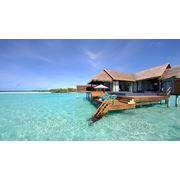 Стажировка на Мальдивах фото