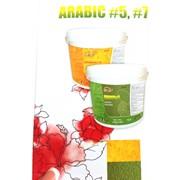 Декоративные покрытия Arabic #7 фото