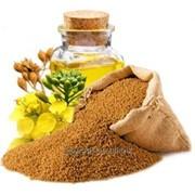 Масло рыжиковое (camelina oil) фото