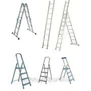 Универсальные лестницы 3*10 фото