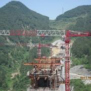 Аренда башенного крана Zoomlion TCT5513-8 фото