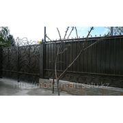 Ворота,заборы,калитки фото