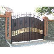 Кованные ворота и калитка фото