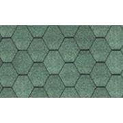 Битумная черепица KATEPAL KL (Катепал КЛ) Зеленый фото
