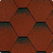 Битумная черепица SHINGLAS (Шинглас) КЛАССИК КАДРИЛЬ Красный фото