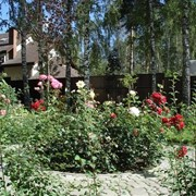 Благоустройство территории озеленение сада в Алматы и области фото