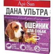 Ошейник для средних собак Api-San Дана фото