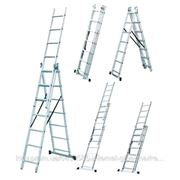 Лестница раскладная 3х секционная Werk LZ3212В, 3х12 (35278)