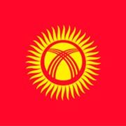 Киргизская фасоль оптом фото